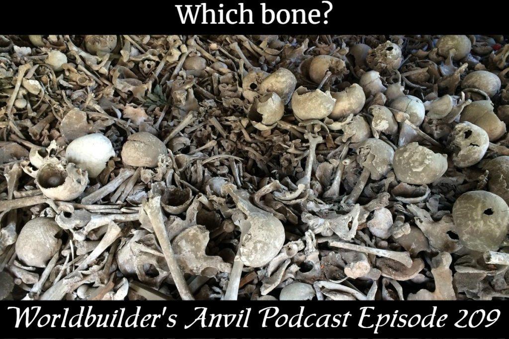 Which bone?